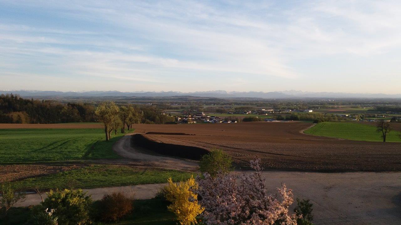 Bauer am Berg - Fam. Eigner - Schwertberg | Kompost | Erdmischungen | Holz-Produkte | Wachteleier | Hühnereier