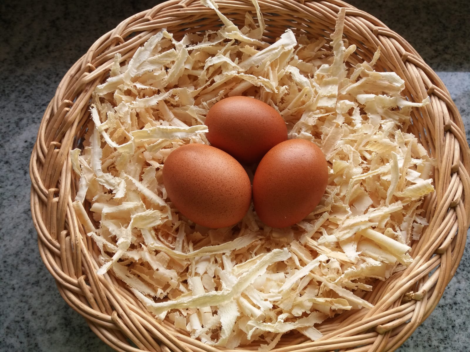 02-dunkelbraune-eier-von-den-maran