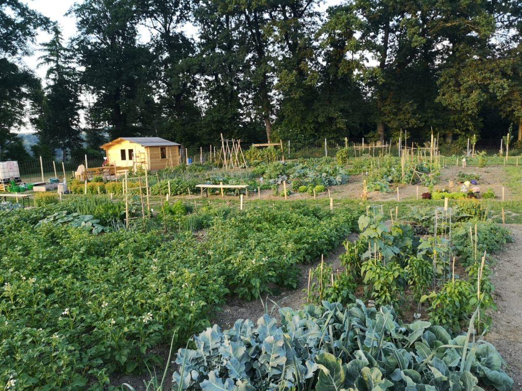 Der Gemeinschafts- und Mietgarten